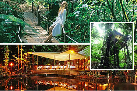 Daintree Eco Lodge & Spa – Queensland, Austrália